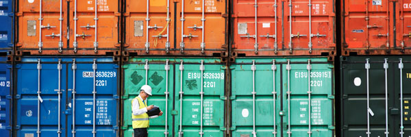 exporter reviewing a stack of containers